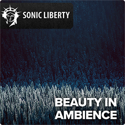 Royalty-free Music Beauty In Ambience