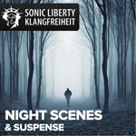 Gemafreie Musik Night Scenes&Suspense
