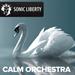 Filmmusik und Musik Calm Orchestra